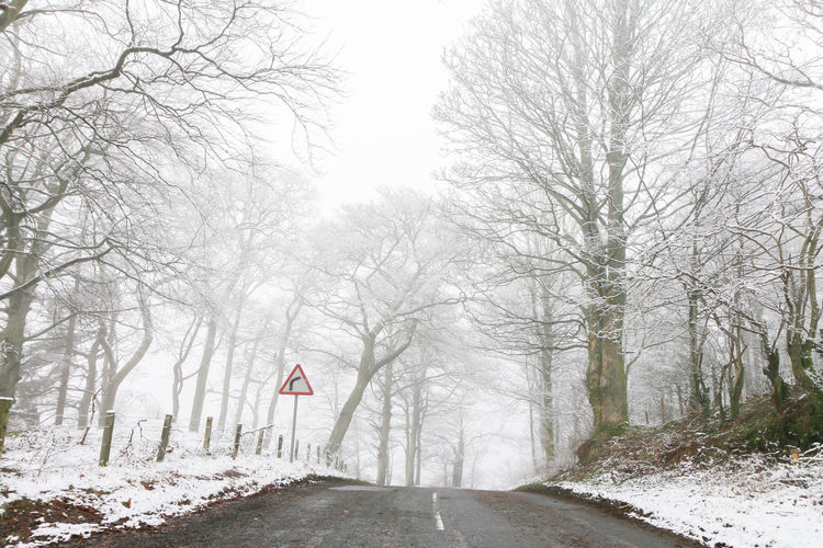 Downhill road through winter trees Freezing Bare Tree Beauty In Nature Cold Temperature Crisp Day Direction Empty Empty Road Icy Land Nature No People Outdoors Road Scenics - Nature Sign Silent Sky Snow Tranquil Scene Tranquility Transportation Tree Winter