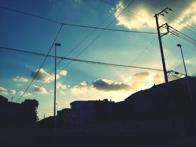 蕨 Lookup Sky