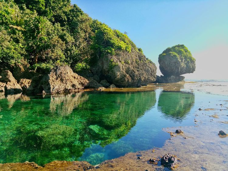 Rockpools Rockpool Siargao Island Magpupungko Nature Naturelover Rock - Object Water Sea Beach Nature Outdoors Day Beauty In Nature Scenics Sand No People Blue Sky Clear Sky Tree