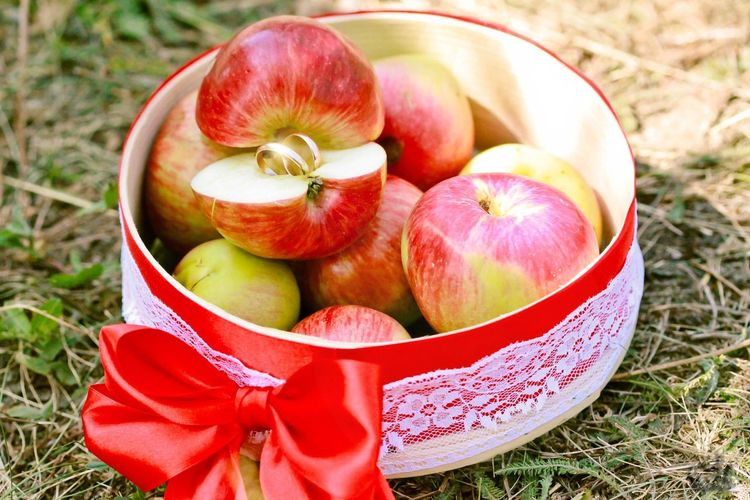 Apples with love Apple Apples Wedding Wedding Rings Wedding Theme Fruit Red Summer Close-up Grass Food And Drink
