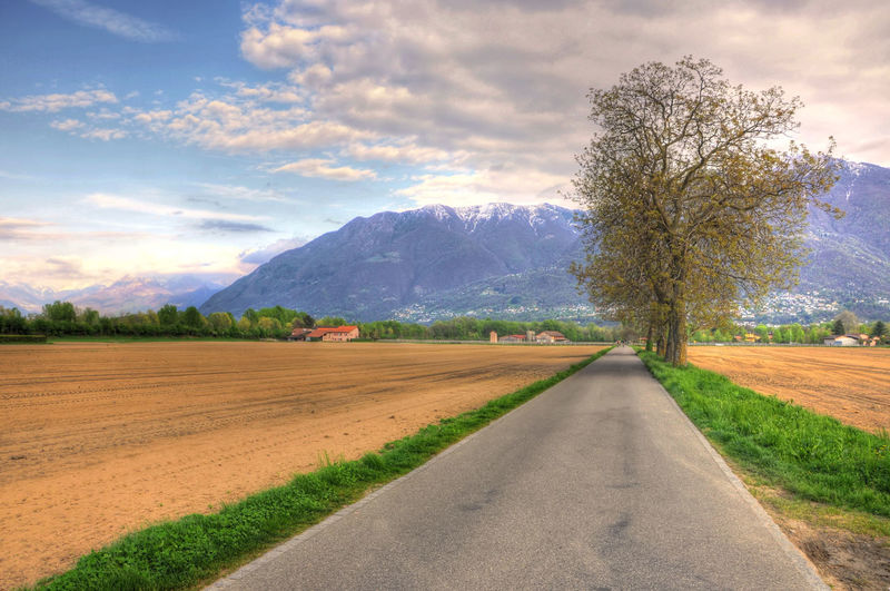 Road with Tree and Snow-capped Mountain in Ascona, Switzerland. Snow-capped Tranquility Beauty In Nature Cloud - Sky Color Day Daylight Diminishing Perspective Field Grass Landscape Mountain Mountain Range Nature No People Outdoors Road Rural Scene Scenics Sky Street Swiss Alps The Way Forward Tree Vanishing Point