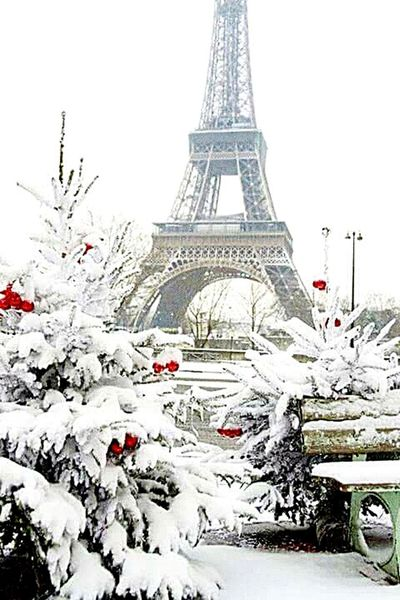 Winter Cultures Snow Travel Destinations Tree Tower Outdoors City Cold Temperature Christmas Vacations No People Finding New Frontiers EyeEm Creative EyeEm Best Shots Differential Focus EyeEm Market © Different Point Of View Winter_collection EyeEm Macro Paris Paris, France  Paris Je T Aime Tour Eiffel Tour Eiffel, Paris.