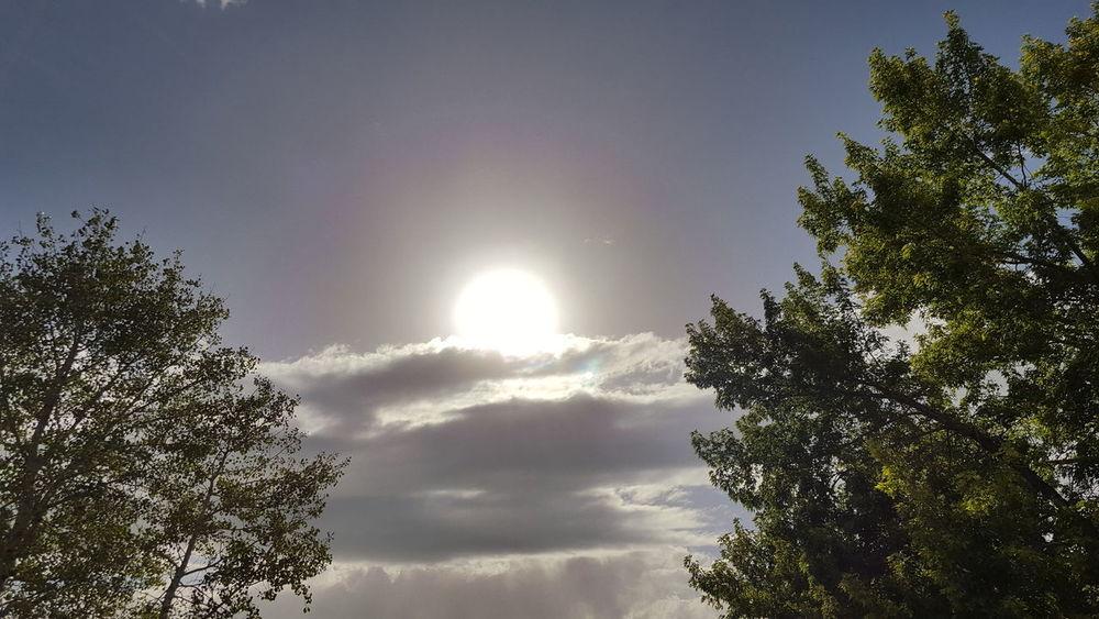 The sun, we've only one. Taking Photos Sun Summer Utah Ogden