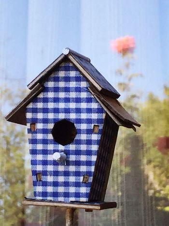 Bird house, Slovakia Bird Birdhouse Slovakia Outdoors Outdoor Photography Reflection Reflections Countryside