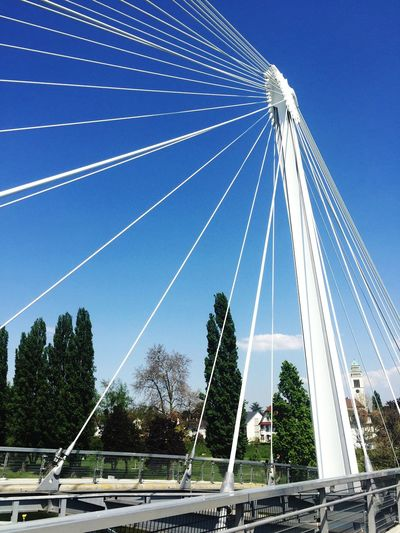 Color Blue No People Clear Sky Day Tree Connection Low Angle View Sky Cable Transportation Outdoors Summer Bridge Architecture