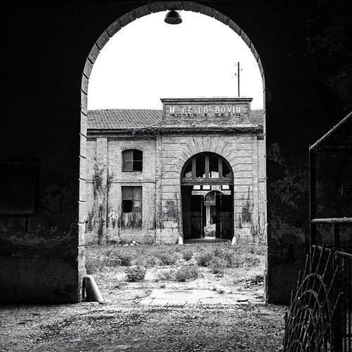 Ex Macello Ravenna