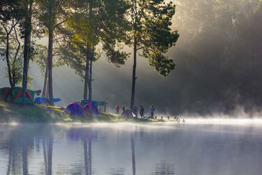 Sunrise at Pang-ung Lake, Pine Forest, Mae Hong Son,North of Thailand Beautiful Blackground Camping Family Morning Pine Forest Pine Forest On The Mountain After Raining With The Fog. Yoka Amazing Bamboo Raft Boat Fog Lake Lake View Landscape Mae Hong Son Thailand Mist Nature Resorts Sun Sunrise Tent Village Village View Women