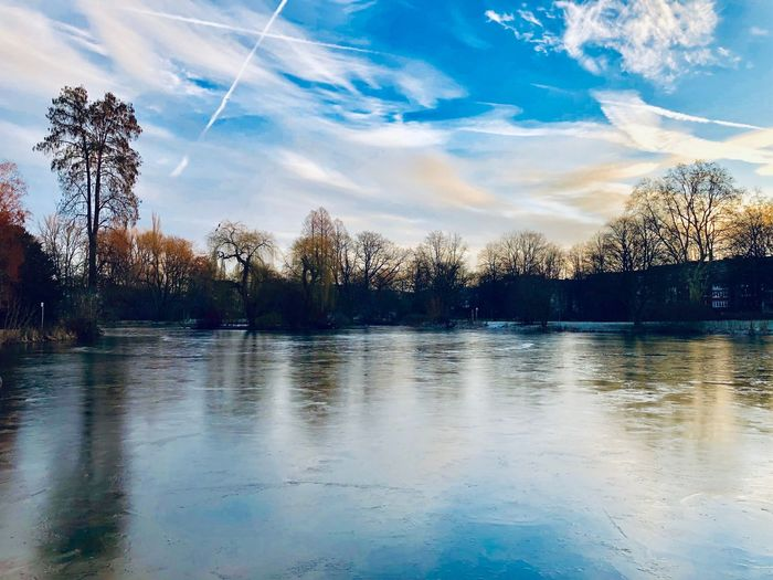 Zoopark Tree Sky Cloud - Sky Plant Water Tranquility Beauty In Nature Reflection Lake Idyllic Waterfront Blue Day Outdoors Non-urban Scene Scenics - Nature Reflection Tranquil Scene Nature No People Lake