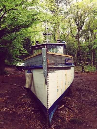 Bristol England Clifton Hanging Out Taking Photos Walking Around Woods Boats Nature