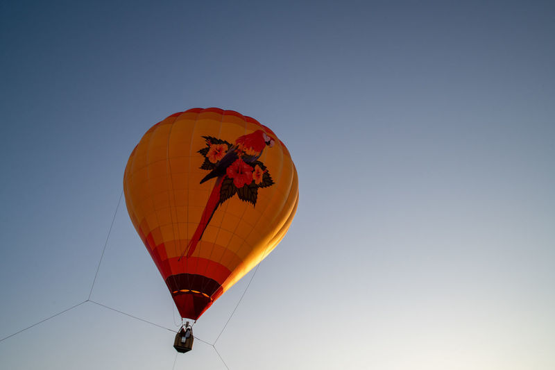 Balloon Flying Sky Air Vehicle Hot Air Balloon Transportation Nature Clear Sky Mid-air Red Low Angle View Blue Copy Space Adventure Extreme Sports Mode Of Transportation Orange Color No People Parachute Outdoors Freedom Ballooning Festival