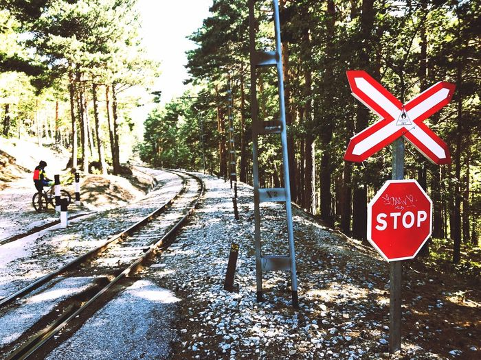 Transportation Tree Railroad Track Day Road No People Outdoors Nature Road Sign Sky Mountain Bike Mountain Biker