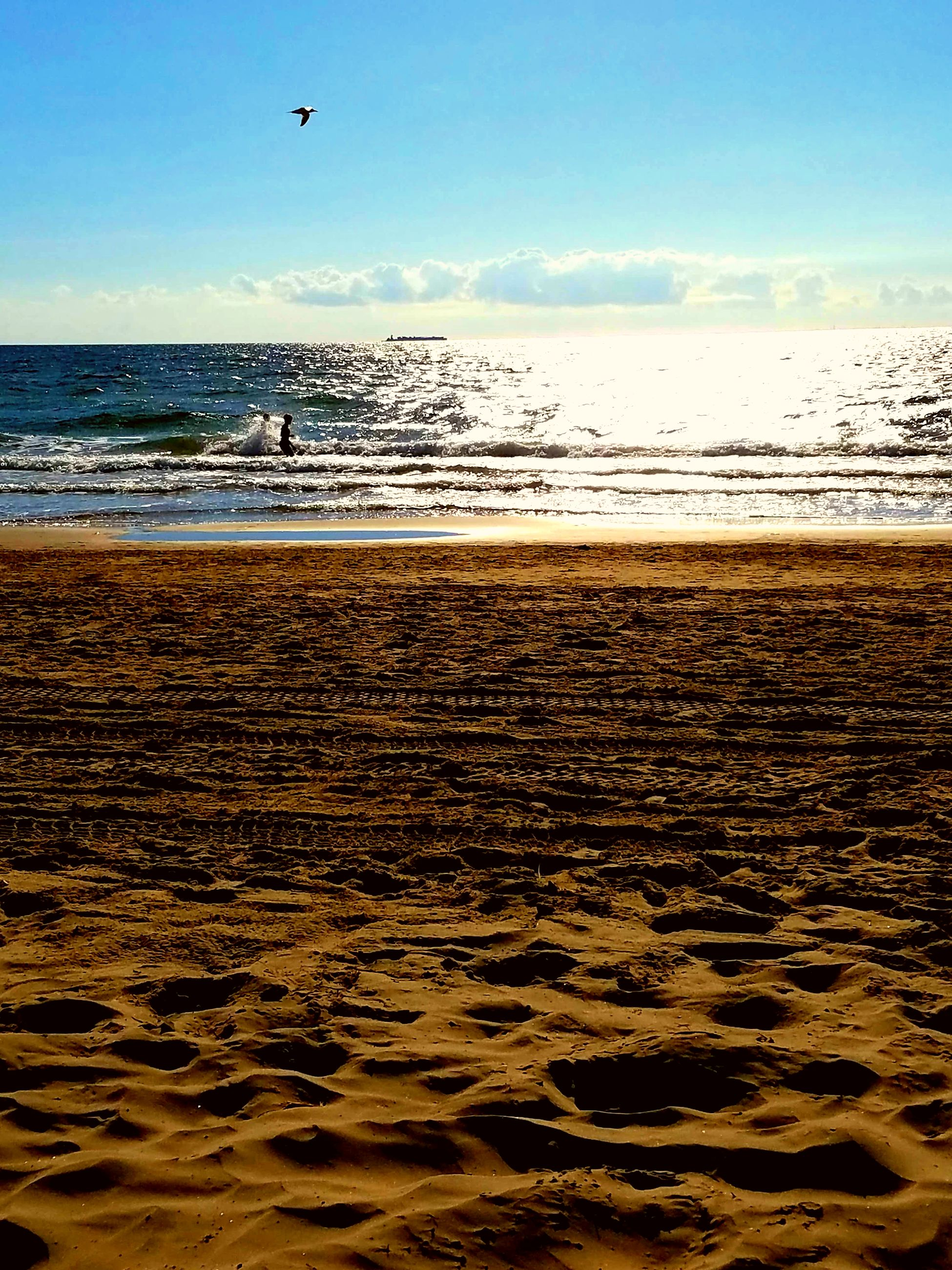 sea, beach, water, nature, sand, horizon over water, beauty in nature, scenics, sky, outdoors, sunlight, day, wave, vacations, flying, adventure, no people, parachute, extreme sports