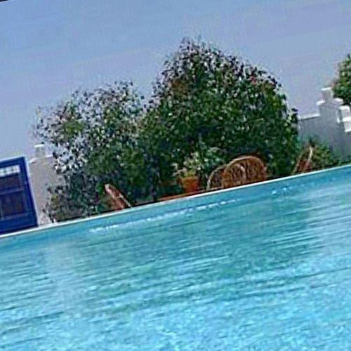 a grama do vizinho eh mais verde e a piscina muitooo mais azul ... dolce far assolutamente nulla Bronze Tomarsol Verao2014 Estate
