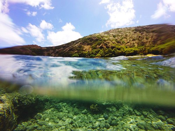 Hawaii water 🌴💚 Hawaii Hanauma Bay Clarity Clear Vibrant Mystery Green