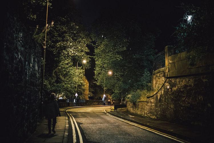 Illuminated road by trees in city at night