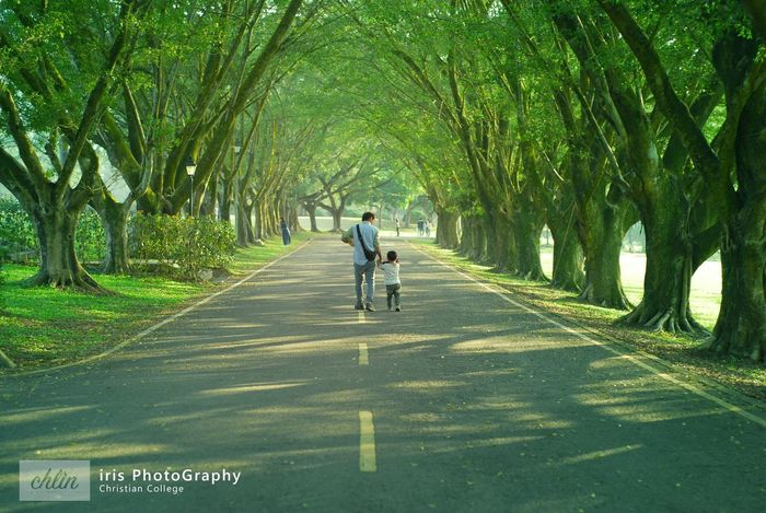 Kids Father & Son Dad And Son 1/1/2017 Tree Wonderful Wonderful Day Sweethearts Cute Little Boy Life Photography Photogrpher Photographic Photographic Memory Happy New Year Hi2017 Bye2016 Green Color Treeway Longway Neture Neturphotography Taiwan Rear View