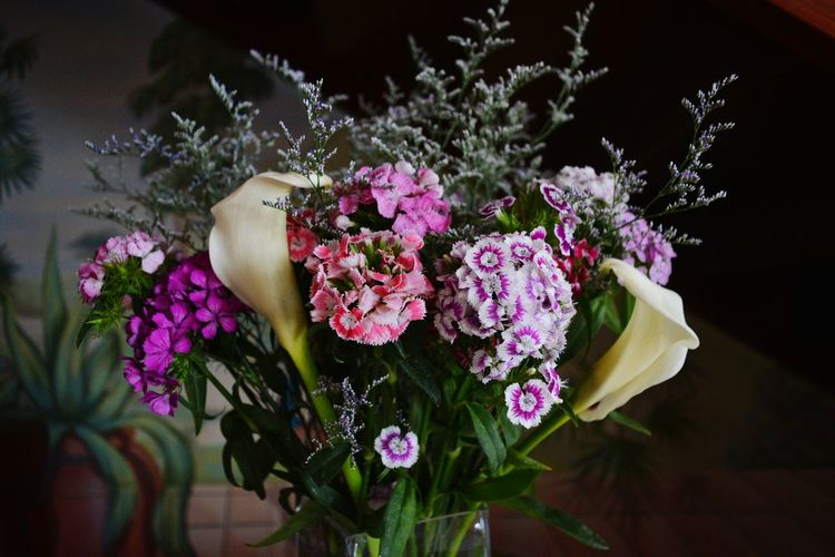 Various flowers in vase
