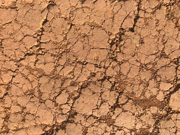 Cracked Dirt Mud Textured  Damaged Fracture Backgrounds Drought Land Weathered Arid Climate Dry Brown Breaking Dirty Bad Condition Textured Effect Close-up Clay Dividing