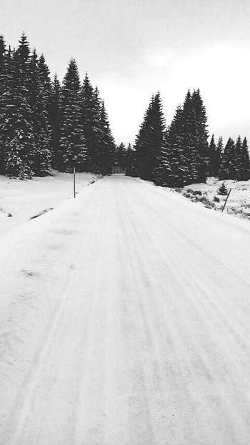 Winter is simply beautiful.❄ Winter Wonderland Winter Walk Winterland EyeEm Nature Lover Blackandwhite Follow Me