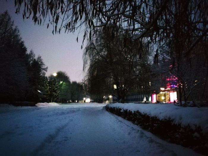 Очень грустно становится, когда ты видишь что-то красивое, но у тебя нет времени запечатлеть это.. Мои кадры- кадры впечатления. Возможно, это не то, чтобы я хотела показать вам, но для меня они оставляют то самое приятное воспоминание о прекрасном Tree Illuminated City Winter Snow Sky Tree Topper The Way Forward