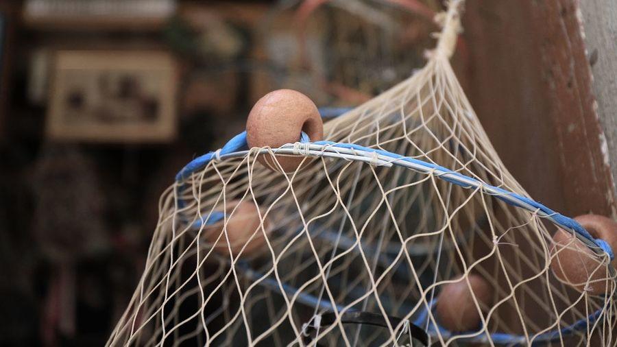 Canonphotography Cefalú, Sicilia, Mare, Paesaggio Fishing Tirreno Tirrenic Sea Cage Close-up One Animal Day Food People