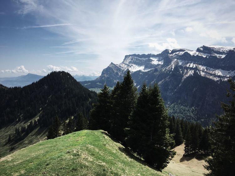 hiking /// lucerne /// pilatus /// Hiking Pilatus Luzern Lucerne Spring VSCO Vscocam Vscofilm EyeEm Best Shots Switzerland Wanderlust