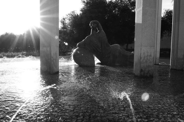 Astrakhan fountains. Sculpture Representation Water Statue Sunlight Lens Flare Sunbeam Tree Nature Art And Craft Human Representation Day Plant Architecture No People Male Likeness Lake Creativity Sun Outdoors White And Black Fontain Black And White Summer Astrakhan