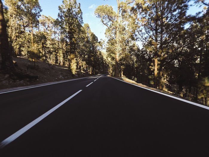 Long way road at the mountain with pines forest in front and blue clear sky - ground point of view with black asphalt and white lines - driving and travel concept Mountain Mountain Range Landscape Wallpaper Horizontal El Teide National Parc Freedom Nature Natural Condition Beauty In Nature Sky No People Outdoors Tranquility Traveling Hiking Excursion Travel Forest Tree Plant Transportation Road The Way Forward Direction Road Marking Symbol Sign Marking Day Growth Diminishing Perspective Sunlight Dividing Line