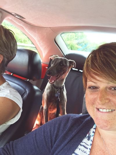 Travellling Heading To The Campsite Camping Trip! Summertime Pets Domestic Animals Car Interior Photographing The Photographer Whippet Happy Campers Togetherness Family Time Leather Seats Let's Go. Together. On Our Travels Inside A Beetle Car Your Ticket To Europe Pet Portraits
