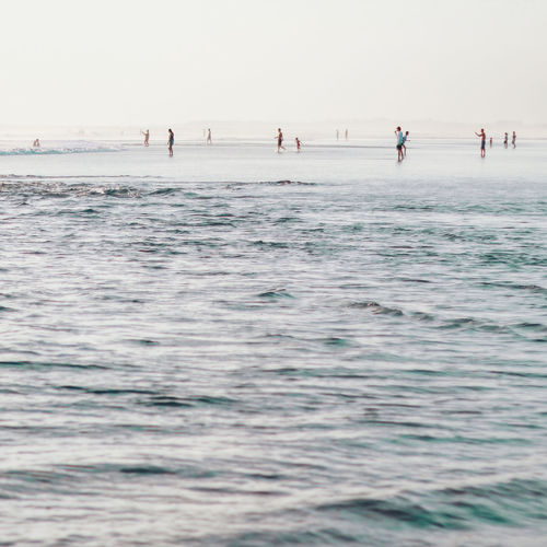 SeaLive For The Story Water Beach Outdoors Full Length Vacations People Wave Day Swimming Group Of People Nature Sky Horizon Over Water Adult
