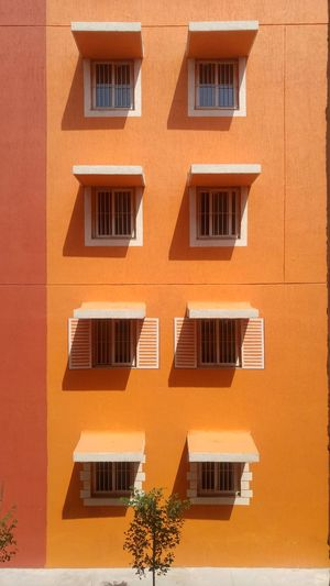 Window Building Exterior Orange Color Architecture Built Structure Full Frame Day No People Low Angle View Outdoors Backgrounds