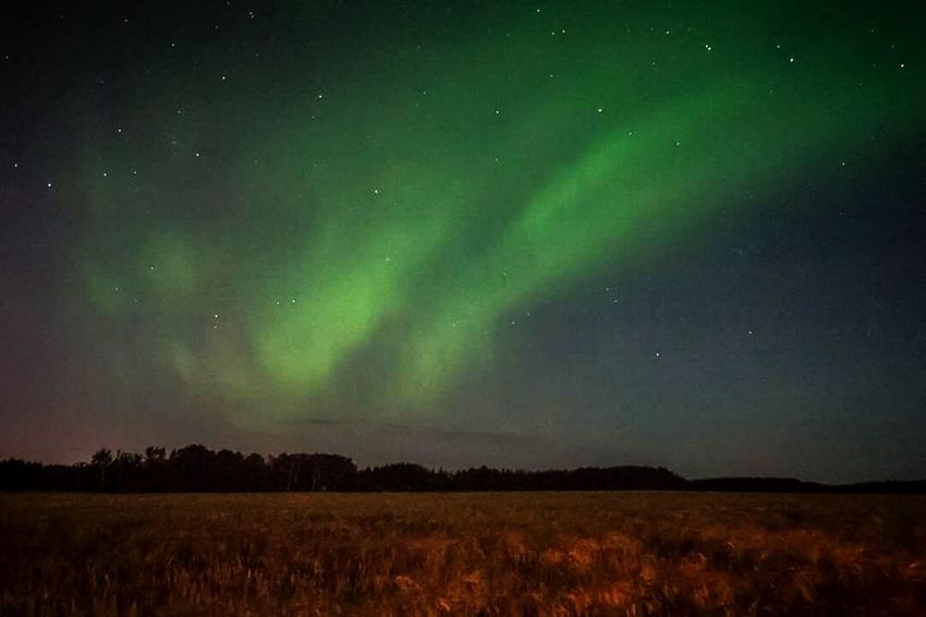 Aurora Aurora Borealis Fields Night Bulb Mode Dancing Light Eyeem Adventure- Saskatchewan Saskatchewan My Work The Great Outdoors - 2017 EyeEm Awards