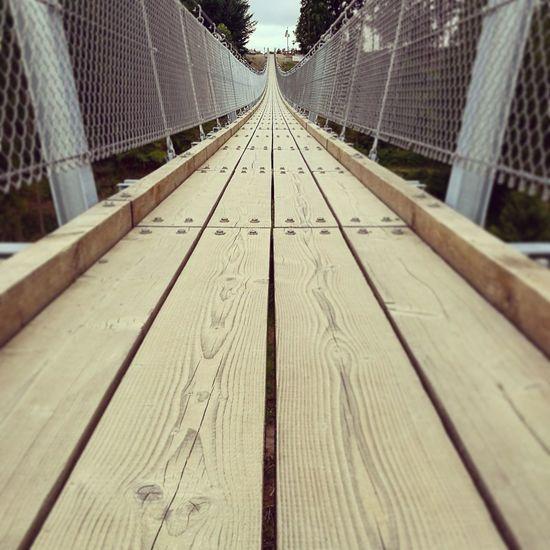 Hängebrücke Geierlay Hängebrücke Hunsrück Mörsdorf Hanging Bridge Adventure Wood - Material Wooden Planks Steel Ropes