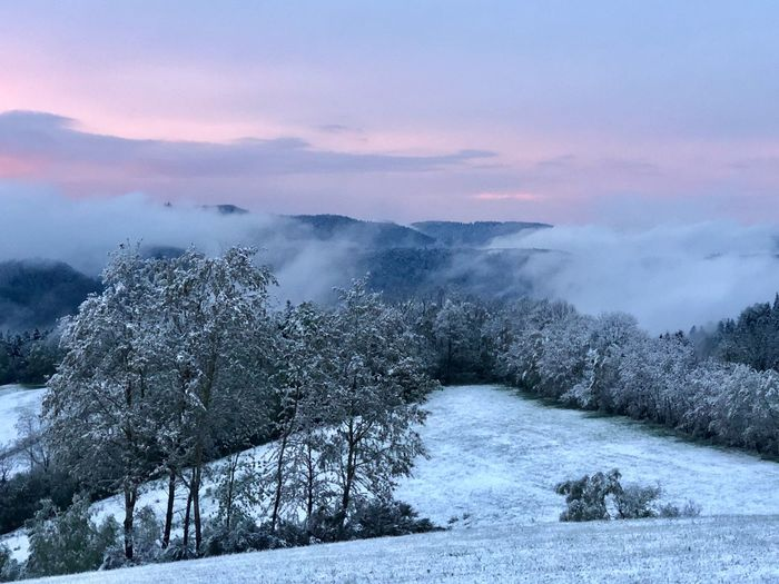 Wetterumschwung über dem Schwarzwald Farbenspiel der Natur 04.05.2019 Winter Cold Temperature Snow Beauty In Nature Tree Plant Stay Out Cloud - Sky No People Mountain Scenics - Nature Land Sunset Nature Landscape The Great Outdoors - 2019 EyeEm Awards