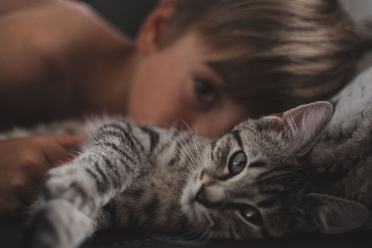 Close-up portrait of boy and cat lying on bed