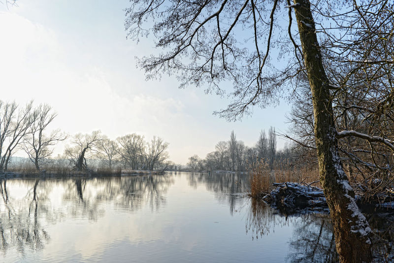 Havel river landscape at winter. Havelland, Germany Havelland Germany Havel Havel River Wintertime Winter River River View Riverscape Landscape Brandenburg Hohennauen Landscapes With WhiteWall