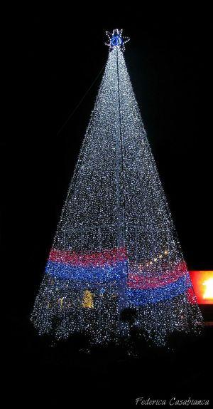 Merry Christmas! Albero Di Natale Luci E Ombre.
