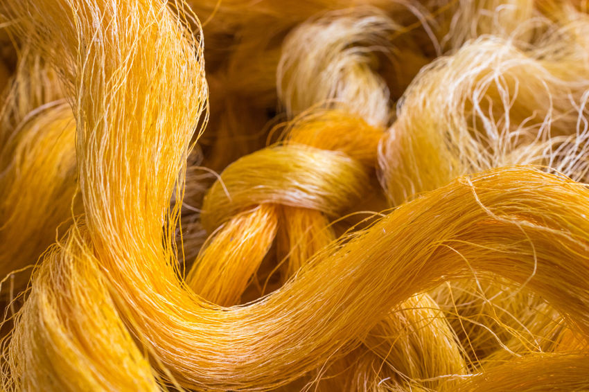 Silk Floss Tree Brocade Close-up Day Gold Colored Indoors  No People Silk Wool Yellow