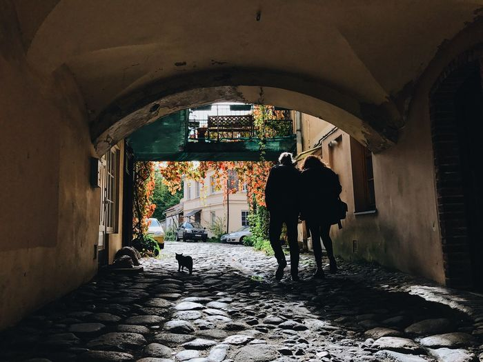 Rear View Real People Walking Men Architecture Full Length Built Structure Arch Two People The Way Forward Women Lifestyles Indoors  Day Mammal Building Exterior People Cat Cat Lovers Cats Of EyeEm Autumn Colors Autumn Autumn Collection