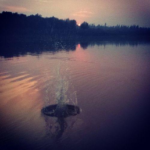 Splash Splashback Sunset Barge landing bargelanding