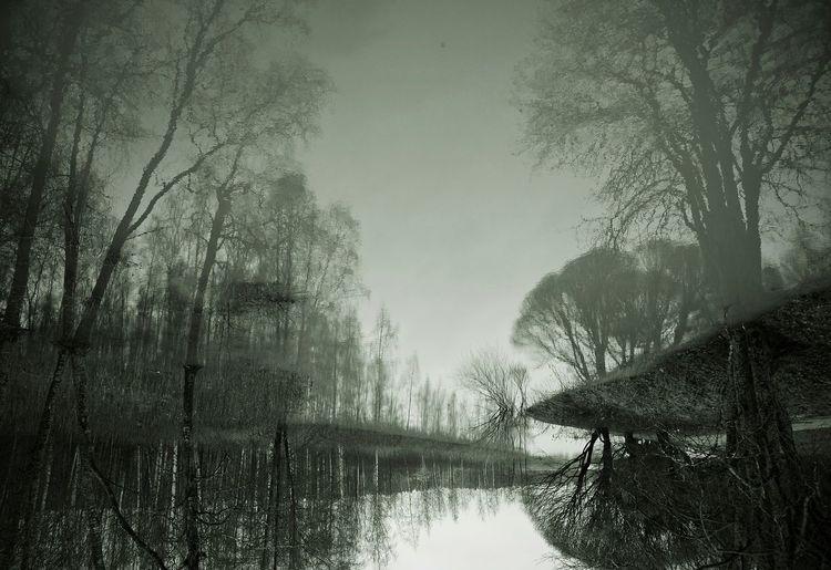 Reflections Upside Down Upsidedownit! Upside Down Photography Blackandwhite Blackandwhite Photography EyeEm Best Shots
