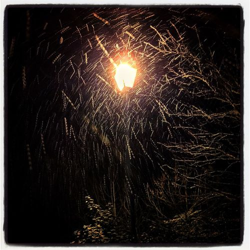 Snow falling against an old Victorian lamp in Northamptonshire Snow Snowing Snow ❄ Snow Day Winter Weather Weather Channel Northampton Northamptonshire Northants Uk United Kingdom