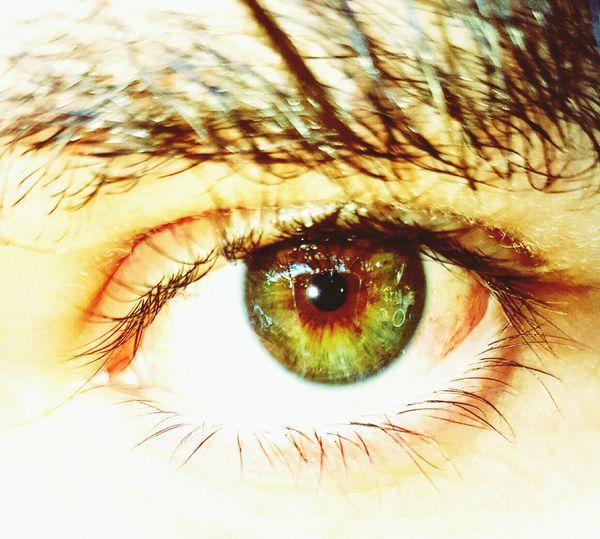 Green Eyes EyeEm Best Shots Eye4photography  Eyes Window Bike Green Green Green!  Green Reflection Close-up