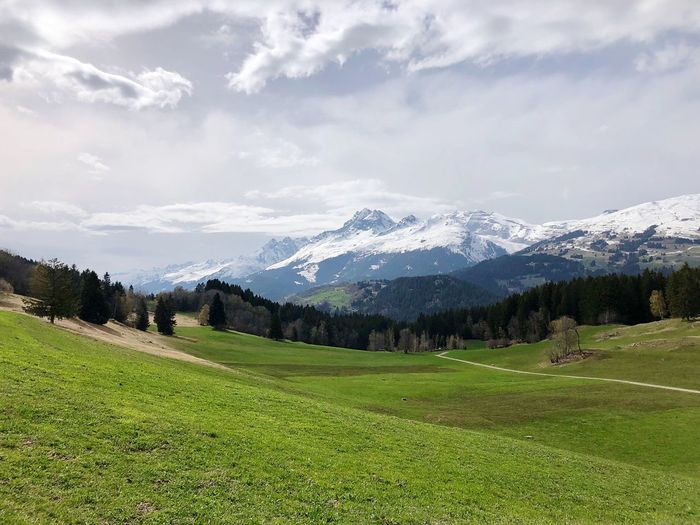 Swiss Beauty EyeEm Nature Lover Swiss Alps Mountain Beauty In Nature Plant Scenics - Nature Grass Sky Environment Cloud - Sky Land Tranquil Scene Landscape Tranquility Green Color Nature Day Field Growth Mountain Range No People