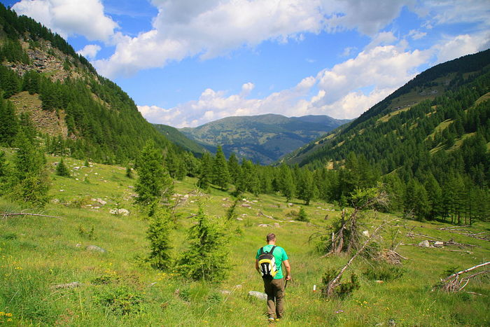 Val Troncea, Italy Adventure Beauty In Nature Cloud - Sky Day Green Color Healthy Lifestyle Hike Hiking Landscape Leisure Activity Mountain Mountain Range Mountains Nature One Person Outdoors Sky Sport Tree Walk Wander Wandering Wanderlust