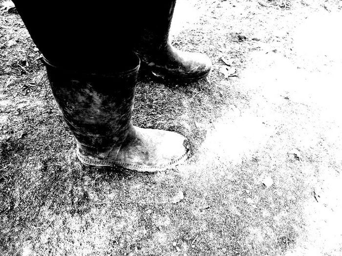 Country Life Mud Boots