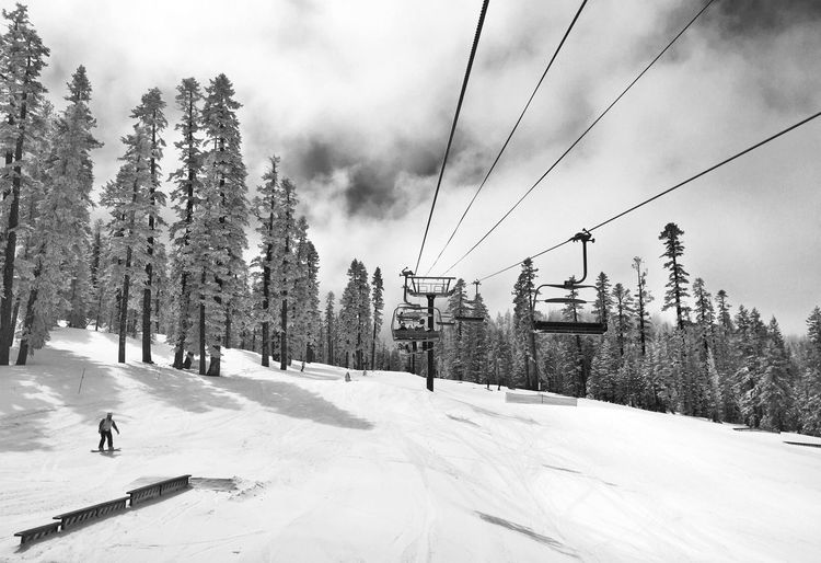 Snow Ski Snowbaording Chairlift Skiing Winter White Nature Trees Cold
