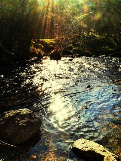 Mountain Stream Water Reflections EyeEm Nature Lover