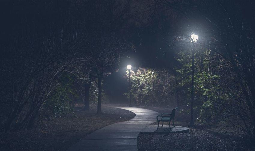Empty walkway amidst illuminated trees at night