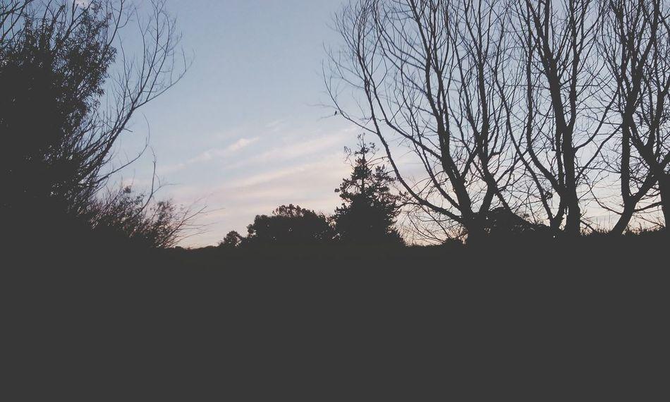 Exploring New Placesx Taking Photos Silhouette Sunset IrenesPics